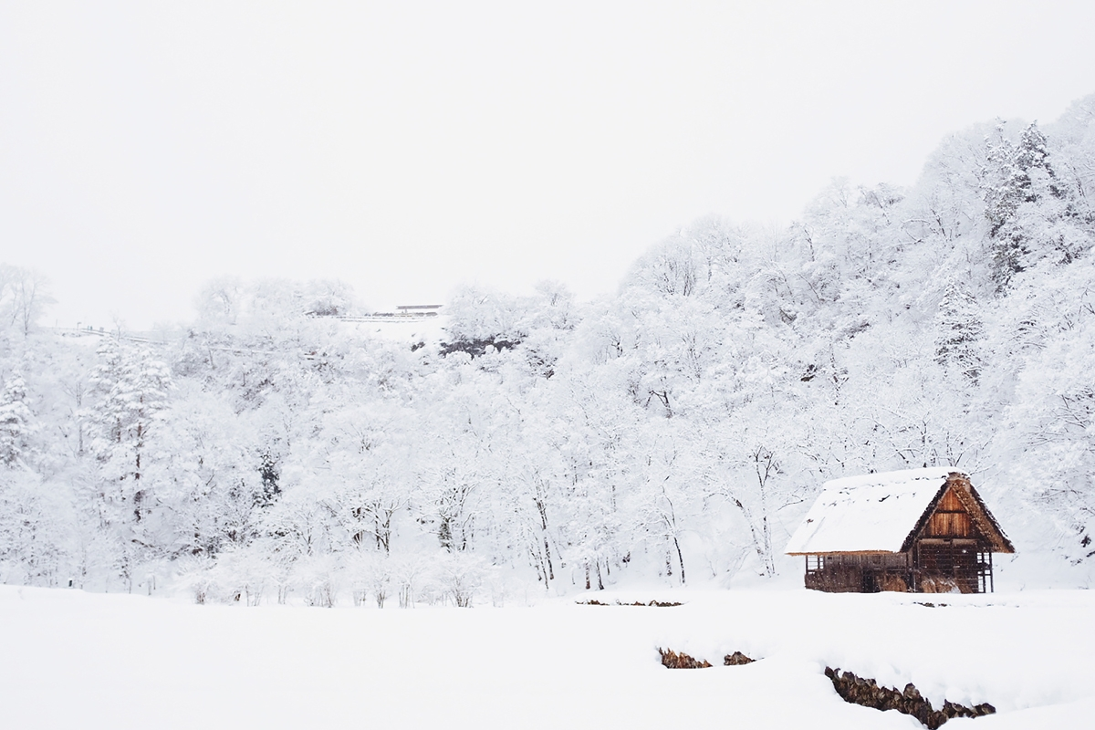 Snow Day or Snowmageddon